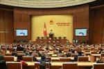 Nghị quyết về công tác phòng, chống tội phạm và vi phạm pháp luật