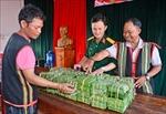 Bộ đội hỗ trợ người dân biên giới Gia Lai đón Tết vui tươi, đầm ấm