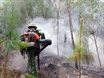 Cháy rừng khu vực núi Con Voi, Nghệ An