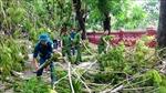 Thừa Thiên - Huế kiến nghị hỗ trợ 400 tỷ đồng khắc phục bão số 5 và xử lý kè biển