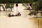 Ứng phó với bão số 8: Quảng Bình chủ động phương án di dời dân