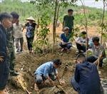Phát hiện và cất bốc thành công 5 bộ hài cốt liệt sỹ tại Bình Phước
