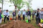 Chủ tịch UBND thành phố Hà Nội tham gia trồng cây hoa anh đào, tô điểm sắc xuân cho thành phố 'vì hòa bình'