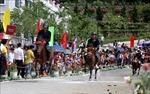 Chiêm ngưỡng những khoảnh khắc đẹp nhất từ giải đua ngựa Fansipan lần thứ nhất