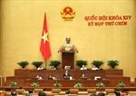 Trình Quốc hội Chương trình mục tiêu quốc gia phát triển kinh tế - xã hội vùng đồng bào dân tộc thiểu số và miền núi giai đoạn 2021-2030