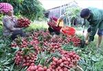 Dù COVID-19 quay lại, triển vọng tăng trưởng kinh tế Việt Nam vẫn được kỳ vọng đầy lạc quan