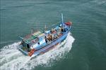 Bảo vệ nguồn lợi thủy sản gắn với phòng, chống khai thác IUU