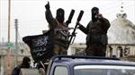 Bị bao vây, IS biến thành 'đội quân bóng đêm', lui về sa mạc Syria náu mình