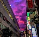 Bầu trời Nhật Bản chuyển tím đáng sợ trước siêu bão mạnh nhất trong 60 năm