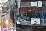 106 người Hong Kong trên tàu Diamond Princess bị cách ly thêm 14 ngày khi về