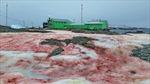Tuyết nhuốm màu đỏ máu phủ kín ngoài trạm nghiên cứu Nam Cực
