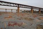 Phát hiện hàng trăm thi thể nghi nạn nhân COVID-19 chôn dọc sông Hằng