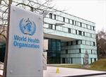 Chuyên gia Việt Nam tham gia nhóm điều tra nguồn gốc dịch COVID-19 của WHO