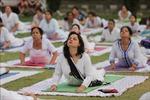 Ngày Quốc tế Yoga 21/6: Phương thuốc cải thiện thể chất và tinh thần của phái yếu