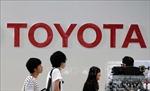 Toyota đầu tư 3,4 tỷ USD để sản xuất pin ô tô tại Mỹ