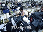 Hoa Kỳ tiếp tục là thị trường xuất khẩu trọng điểm của Việt Nam