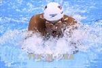 Kình ngư Mỹ từng đoạt 6 HCV Olympic bị cấm thi đấu 14 tháng