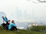 Ô nhiễm không khí có thể dẫn tới chứng mất trí nhớ