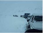 Hàng ngàn người bị mắc kẹt do mưa tuyết kỷ lục ở Ấn Độ