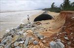 Bờ biển xã Vinh Hải, Thừa Thiên - Huế sạt lở nghiêm trọng