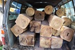 Phát hiện vụ vận chuyển 32 hộp gỗ lậu giấu dưới các bao trấu