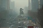 Hàn Quốc thử nghiệm mưa nhân tạo trên biển làm giảm nồng độ bụi mịn