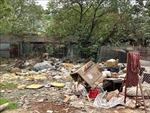 Hà Nội triển khai nhiều giải pháp chống rác thải nhựa