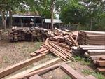Phát hiện, thu giữ 4,6 m3 gỗ gõ, lim, táu... giấu trong trụ sở UBND xã