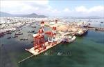 Công ty cổ phần Cảng Quy Nhơn lên tiếng về thông tin 'thổi phồng' kết quả kinh doanh