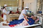 Số bệnh nhân sốt xuất huyết tại Gia Lai tăng gấp 3 lần năm ngoái