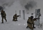 Phó Tổng thư ký LHQ: Cuộc chiến tại miền Đông Ukraine ngày càng cướp đi nhiều sinh mạng
