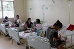 555 người tử vong vì sốt xuất huyết tại Philippines và Thái Lan