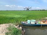 Đồng bằng sông Cửu Long thích ứng với biến đổi khí hậu - Bài 3: Phát huy vai trò kinh tế tập thể