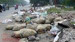 Quản lý chất thải rắn đô thị: Bài cuối - Thay đổi chính sách để vượt qua 'khủng hoảng chất thải'