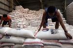 Philippines sẽ giảm nhập khẩu gạo trong năm tới