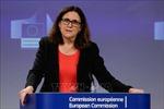 EU tuyên bố đáp trả biện pháp thuế quan của Mỹ