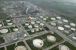 Giá dầu thế giới đi lên do dự trữ dầu của Mỹ sụt giảm bất ngờ