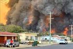 Khói từ thảm họa cháy rừng ở Australia khiến hàng nghìn người nhập viện vì bệnh tim phổi