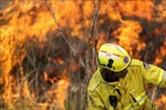Một đối tượng bị buộc tội gây ra cháy rừng dọc bờ biển miền Đông Australia