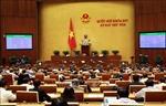Quốc hội thông qua Nghị quyết về Đề án phát triển KT- XH vùng đồng bào DTTS và miền núi