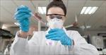 Nghiên cứu vaccine phòng virus SARS-CoV-2 trên chuột cho kết quả khả quan