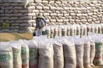 Xuất cấp 1.000 tấn gạo dự trữ hỗ trợ nhân dân Lào khắc phục thiên tai