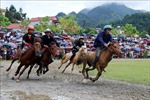 Giải đua ngựa truyền thống Bắc Hà - lễ hội thể thao, văn hóa đặc sắc vùng Tây Bắc