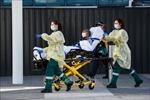 Australia nỗ lực tìm ra phương pháp điều trị COVID-19 hiệu quả nhất