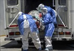 Thế giới ghi nhận 11.034.046 ca nhiễm, 525.156 ca tử vong do COVID-19