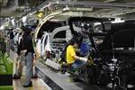 Toyota khôi phục hoạt động tại các cơ sở trên thế giới từ ngày 13/7