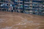Thường trực Ban Bí thư Trần Quốc Vượng gửi thư thăm hỏi tình hình lũ lụt tại Trung Quốc