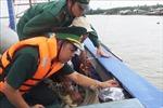 Xử lý hành vi tháo gỡ thiết bị giám sát hành trình tàu cá