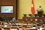 Sửa đổi, bổ sung Luật Xử lý vi phạm hành chính năm 2012 để phù hợp thực tiễn
