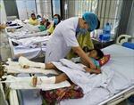 Quảng Nam: Tích cực cứu chữa, tìm kiếm các nạn nhân trong vụ sạt lở đất ở xã Trà Leng